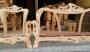 Tasarımını yaptığım koltuk takımı.Halil Karaaslan Modeli piyasaya çıktı.